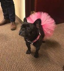 Annie's First Tutu!